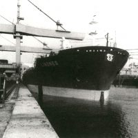 2-194-MN-LINDNES